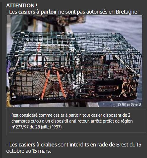Crabes1