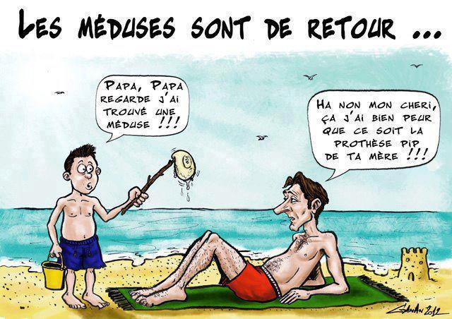 Retour meduses protheses pip
