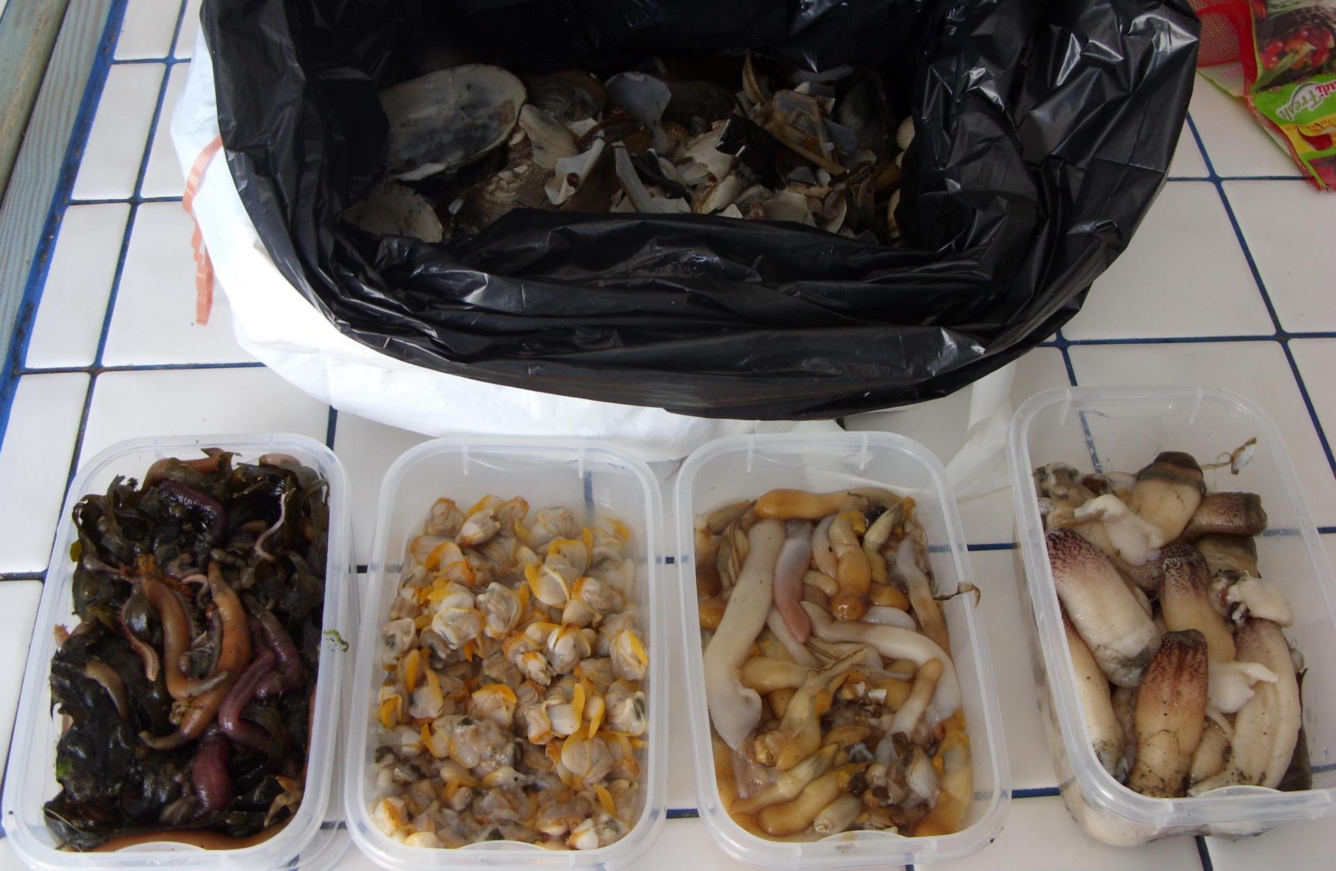 La base du repos dans le domaine dAstrakhan pour la pêche le prix
